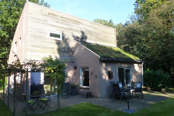 Villa Dwingelderveld, Ruinen